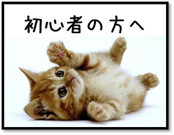 【美容初心者コーナー】のイメージ